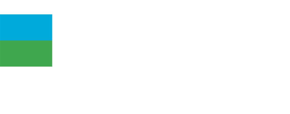 Level Virtual