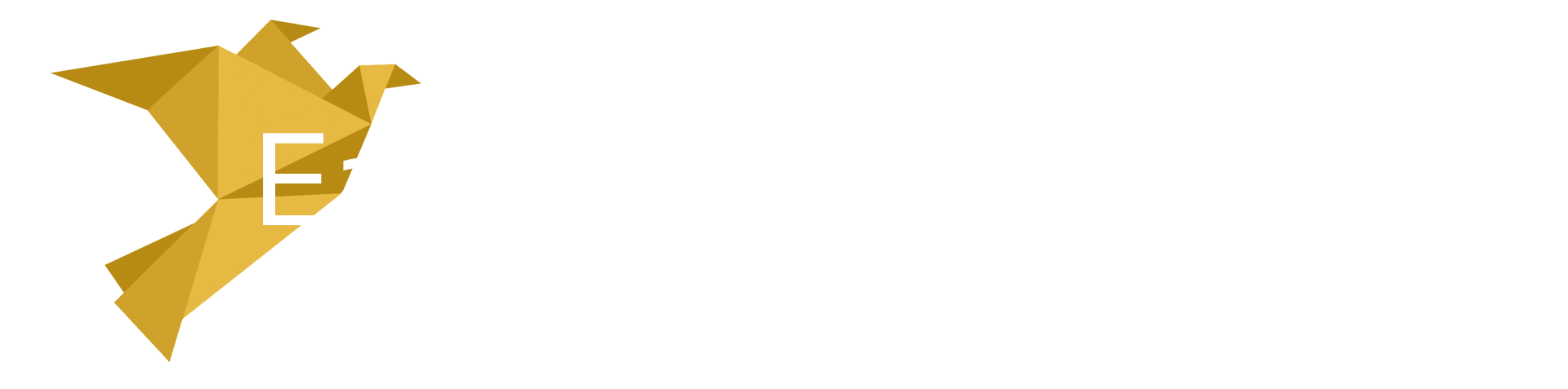 Easy World Airlines